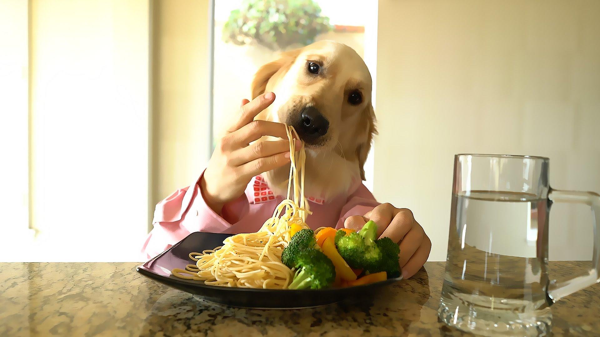 En vällagad och god måltid avnjuts vid middagsbordet, men håll ett höga på vad som egentligen händer!