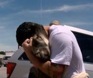 Han tvingades lämna gatuhunden han räddat i Irak. En månad senare återförenas de på andra sidan jordklotet!