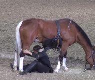 Han sätter sig under hästen men det som händer då fick mig att tappa hakan!