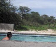 Turisterna badar i poolen. Plötsligt dyker det upp något till höger som gör situationen fullkomligt kaotisk!